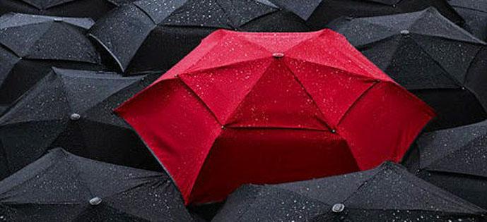 chuva-de-especialistas