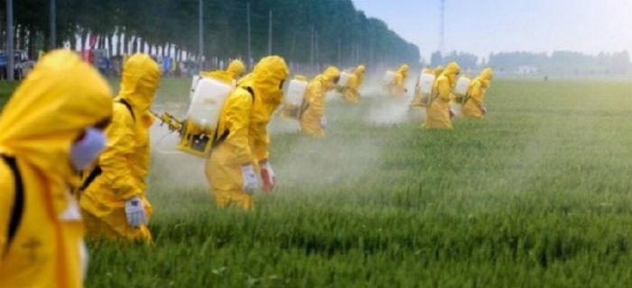 agrotoxico pesticida