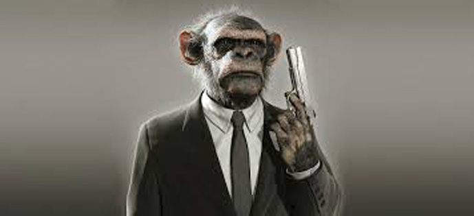 macaco arma