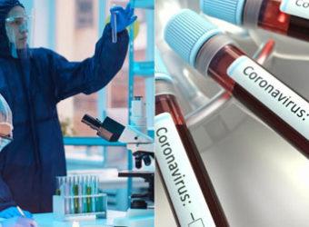 coronavirus ciencia estudos