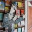 livraria-zaccara-foto-escolhido-pelo-LUCIO-3